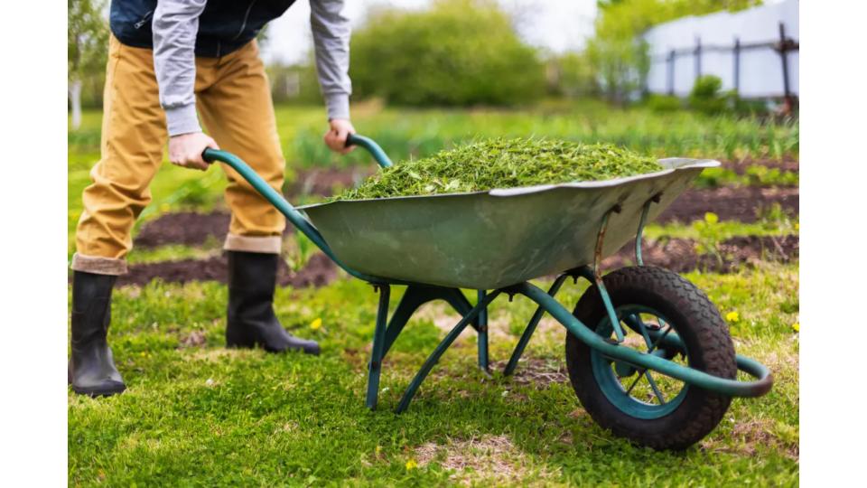Brouette de chantier et de jardin